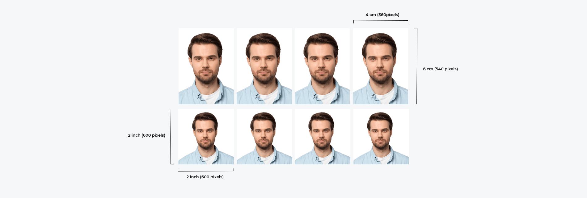 passport picture editor tip 1